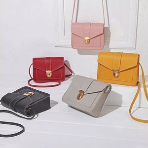 Mini Clutch/Crossover Bag
